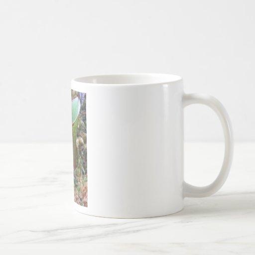 Planta exótica taza básica blanca