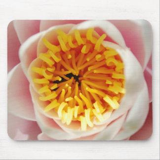 Planta/flor nenufar hermosas alfombrilla de ratones