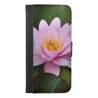 Planta floral rosada del lirio de agua