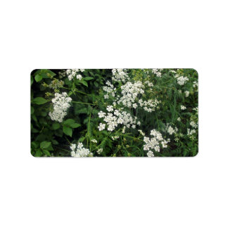 Planta floreciente de la orilla etiquetas de dirección