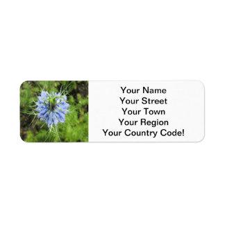 Planta floreciente del verde azul de Nigella Etiqueta De Remite