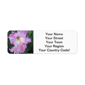 Planta floreciente púrpura del Hollyhock Etiquetas De Remite