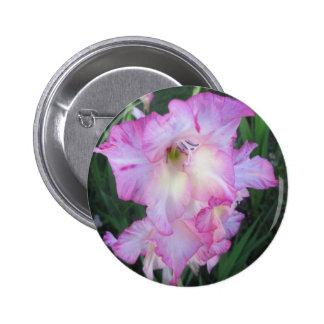 Planta floreciente púrpura del Hollyhock Pins