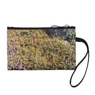 Planta floreciente púrpura en un paisaje rocoso