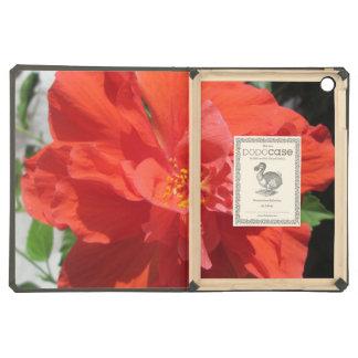 Planta floreciente roja del hibisco