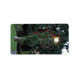 Planta floreciente roja en el parque etiqueta de dirección