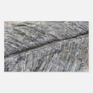 Planta fósil pegatina rectangular