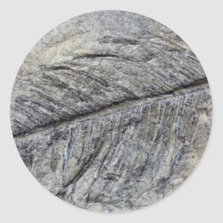 Planta fósil pegatina redonda