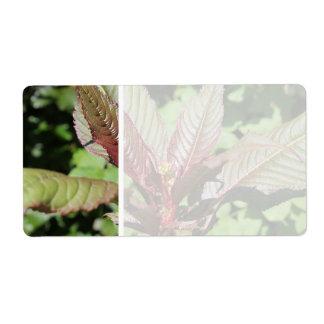 Planta frondosa roja y verde etiqueta de envío