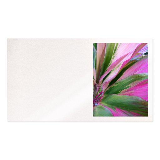 Planta hawaiana del Ti Tarjeta De Visita