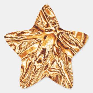 Planta impresionante hecha de nuevo pegatina en forma de estrella
