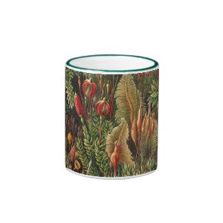 Planta Muscinae del musgo de la flora del vintage Taza A Dos Colores