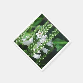 Planta obediente servilletas de papel