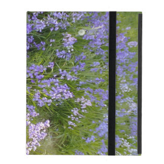 Planta púrpura de la flor
