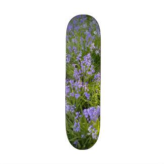 Planta púrpura de la flor skate board