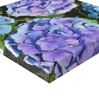 Planta púrpura del Hydrangea Impresiones En Lienzo Estiradas