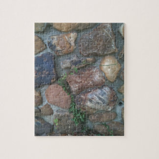 Planta que sube una pared de piedra puzzle con fotos