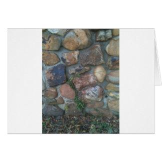 Planta que sube una pared de piedra tarjeta de felicitación