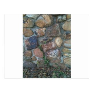Planta que sube una pared de piedra tarjetas postales