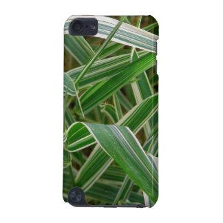 Planta rayada verde de la hierba de la araña y bla funda para iPod touch 5G