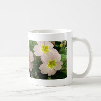 Planta salvaje rosada de la primavera taza básica blanca