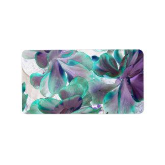 planta suculenta azul del flapjack del trullo etiqueta de dirección