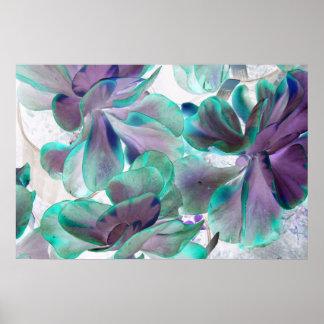 planta suculenta azul del flapjack del trullo inve posters