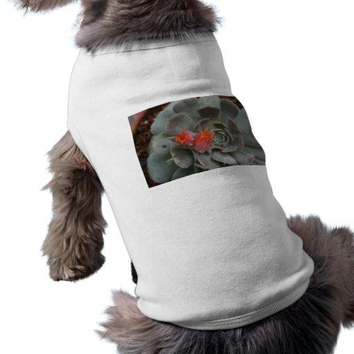 Planta suculenta con la flor anaranjada playera sin mangas para perro