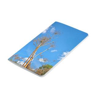Planta temática cuaderno