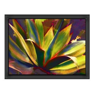 Planta tropical brillante del agavo postales