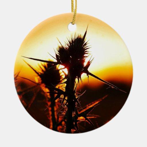 Planta tropical de la puesta del sol de la natural adornos de navidad
