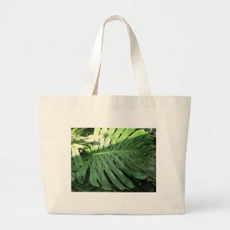 Planta tropical del oído de elefante bolsa