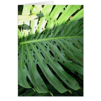 Planta tropical del oído de elefante tarjeta de felicitación