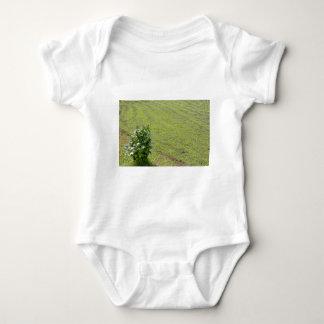 Planta verde de la camelia tee shirts