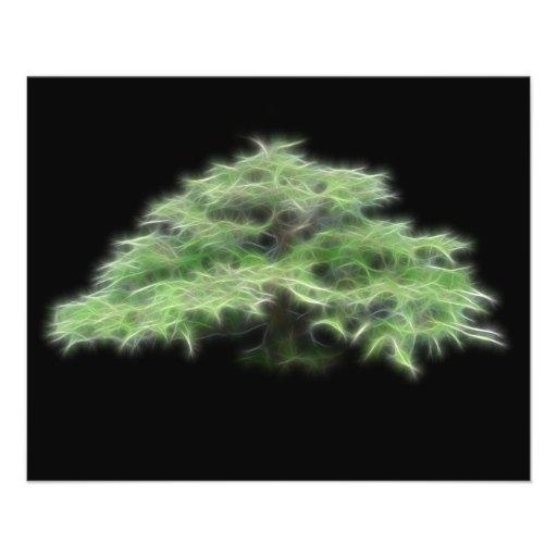 Planta verde del árbol de los bonsais flyer a todo color