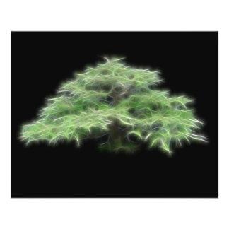 """Planta verde del árbol de los bonsais folleto 4.5"""" x 5.6"""""""