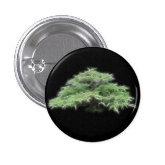Planta verde del árbol de los bonsais pins