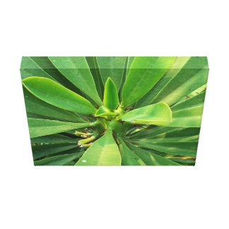 Planta verde elegante impresión en lona estirada