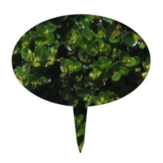 Planta verde figura de tarta