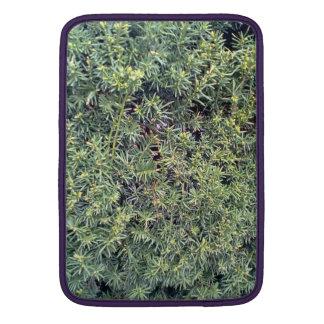 Planta verde funda macbook air