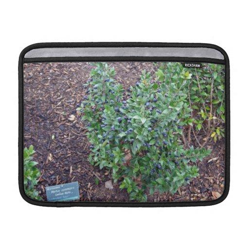 Planta verde por completo de pequeñas frutas azule fundas para macbook air