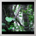 Planta verde poster