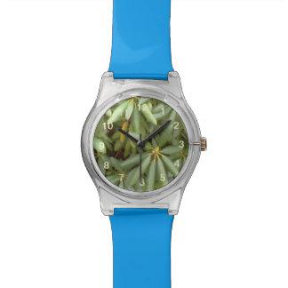 Planta verde relojes de pulsera