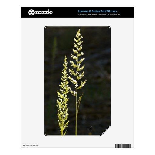 Planta verde skins para elNOOK color