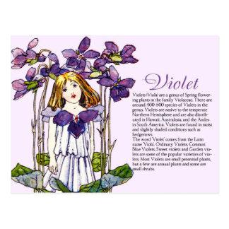Planta violeta Info del chica del vintage del Tarjetas Postales