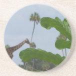 Planta y cielo azul con las jirafas en el fondo posavasos diseño