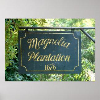 Plantación Charleston Carolina del Sur de la magno Poster
