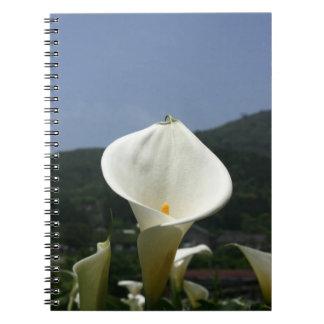 Plantación de la cala, Taiwán Cuaderno