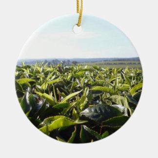 Plantación de té adorno navideño redondo de cerámica