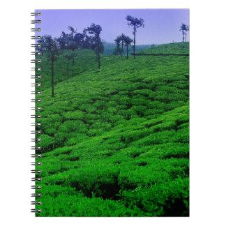Plantación de té libros de apuntes con espiral